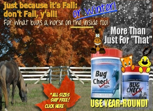 Remember Bug Check Year Round