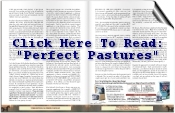Perfect pastures Article