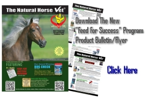 Download Feed For Success Bulletin