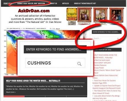 Click Here For AskDrDan.com