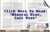Mineral Wise Salt Poor Article